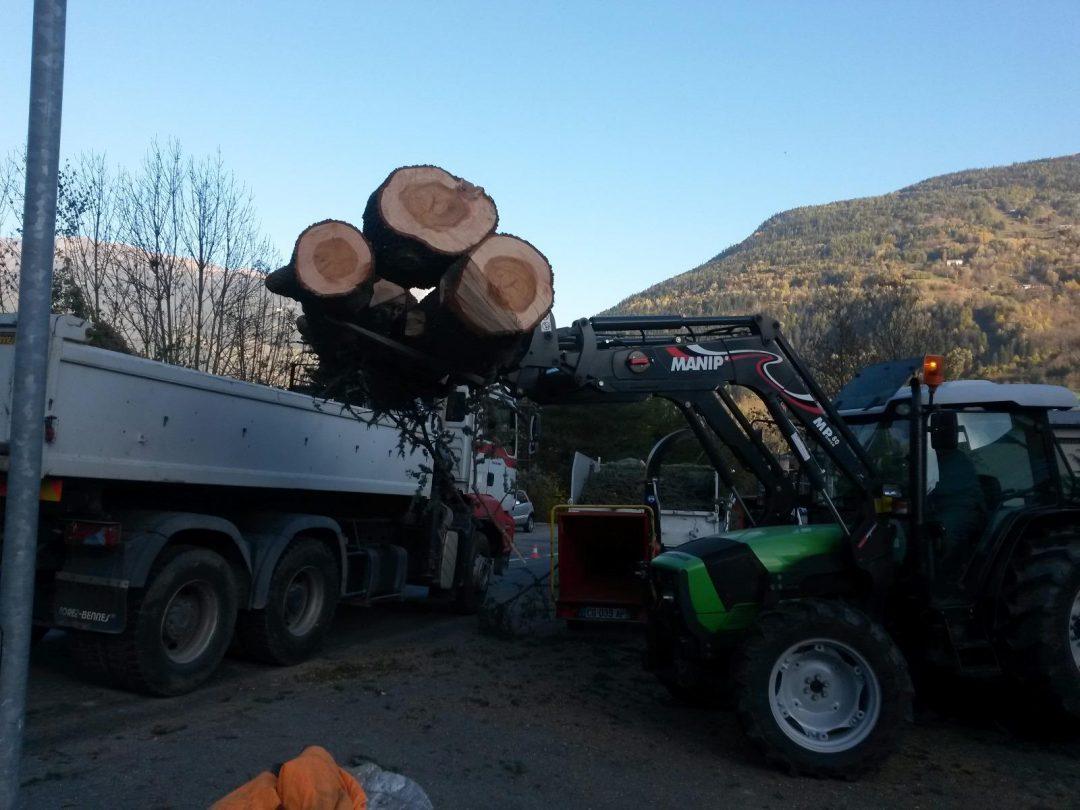 Démontage d'arbres et évacuation, Bourg Saint Maurice